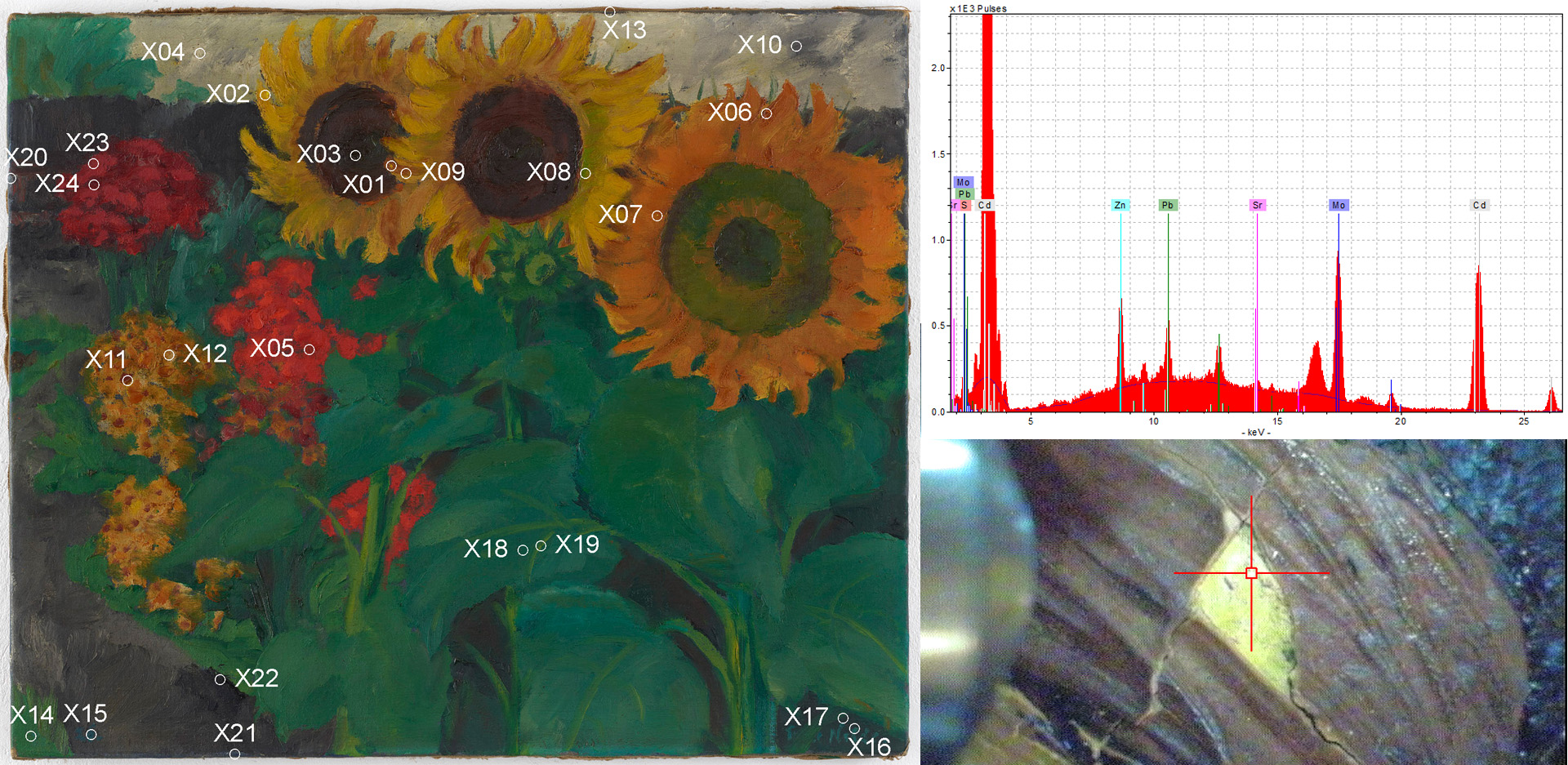 Micro-X-ray fluorescence analysis (µ-RFA) of Emil Nolde's painting Sonnenblumen (1926) showing the mapping of measurement points (left). µ-RFA spectrum of measurement point X01 with measurement photograph (right).